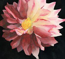 Dahlia by Ken Powers