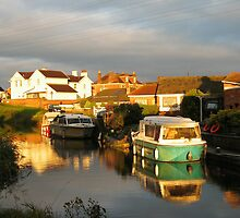 Bridgwater and Taunton Canal #9 by Antony R James