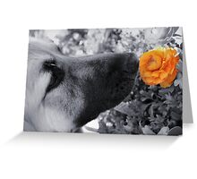 Beauty Stands Out Greeting Card
