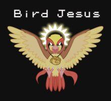 Bird Jesus - Twitch Plays Pokemon by TerraWolfDog