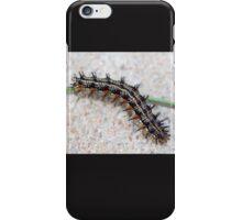 Colorful Caterpillar Case iPhone Case/Skin