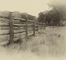 Antique Fence by Bob Maloney