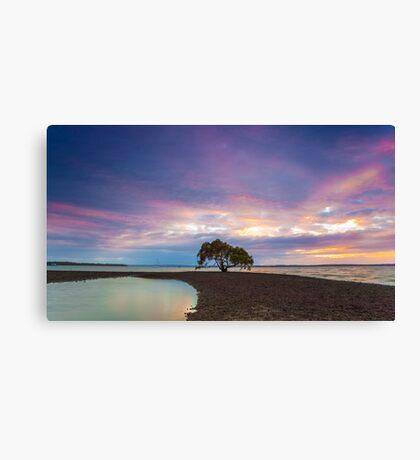 Victoria Point Solo Tree Canvas Print