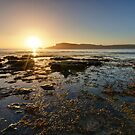Morning Blaze of Glory! 4 shot HDR sequence - Bruny Island, Tasmania, Australia by PC1134