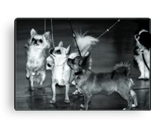 Circus of Toys  Canvas Print