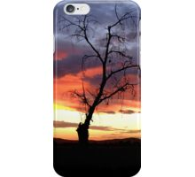 The Sunset Tree iPhone Case/Skin