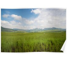 Drakensberg grasslands and mountains Poster