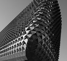 SAHMRI Building by John Quixley