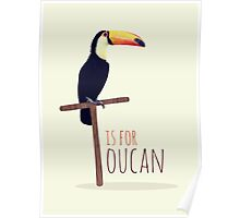 T is for Toucan Poster