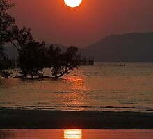Sunset near Ban Tha Lane -Thailand 2 by Debra Kurs