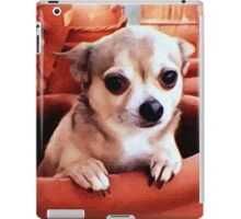 Dexter the Potted Chihuahua  iPad Case/Skin