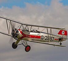 Focke-Wulf Fw-44j Stieglitz D-2692/G-STIG by Colin Smedley