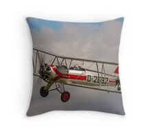 Focke-Wulf Fw-44j Stieglitz D-2692/G-STIG Throw Pillow
