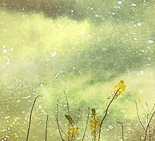 Dreamy Grunge Nature by DFLC Prints