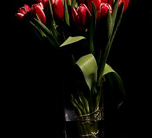 Red tulips in the vase by LacoHubaty