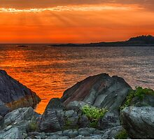 A Sailor's Delight  by Garvin Hunter Photography