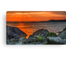 A Sailor's Delight  Canvas Print