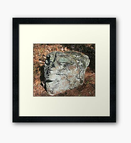 Stone Head Framed Print