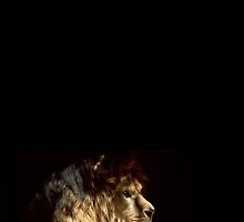 The Lion by coratochico