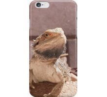 'ERR! SORRY NOT IN THE HOUSE!' Bearded dragon getting pushy. South Australia. iPhone Case/Skin