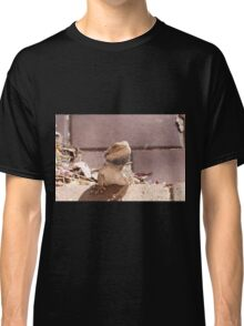 'ERR! SORRY NOT IN THE HOUSE!' Bearded dragon getting pushy. South Australia. Classic T-Shirt