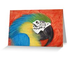 parrot head Greeting Card
