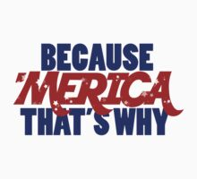 Because AMERICA that's why by Boogiemonst