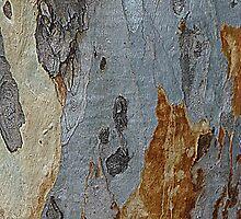 Barking Up The Wrong Tree by Fara