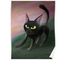 Kitty in riverside Poster