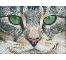 Emerald Eyes Scratch Art Photographic Print