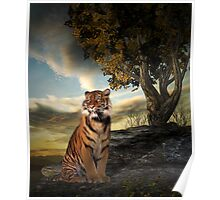 Tigers View Poster