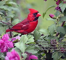 Sing praises to God by WalnutHill