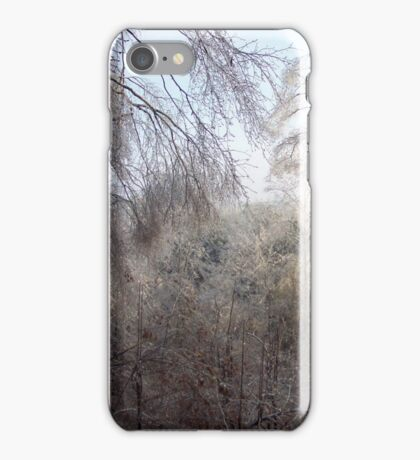 Ice storm iPhone Case/Skin