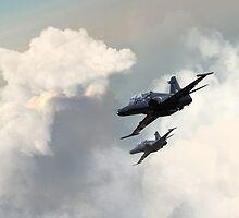 Valley Hawks by J Biggadike