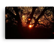 Good Evening Canvas Print
