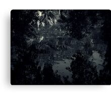 The Dark Continent Canvas Print