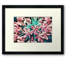 Sunny Agapanthus Flower in Pink & Teal Framed Print