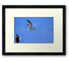 My Tern To Surf Framed Print