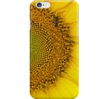 Sunflower #11 iPhone Case/Skin