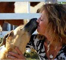 Bonded, Insured and Licensed Las Vegas Pet Sitting Services by safedoggy