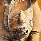 Young rhino by Paul Fearn