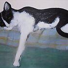 Gizmo McTavish the cat by Jacqueline Eirian McKay