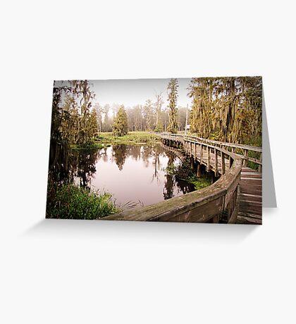 Cattail Trail Greeting Card