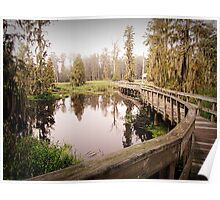 Cattail Trail Poster