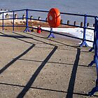Eastbourne Railings And Shadow by Jazzdenski