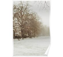 Snow in Kingston park Poster