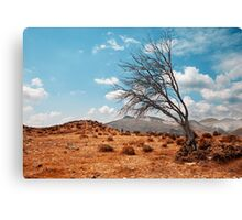 Tree landscape Canvas Print