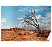 Tree landscape Poster