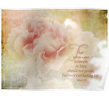 Everlasting Life-John 3:15 Poster