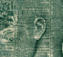 Phrenology Head Sticker